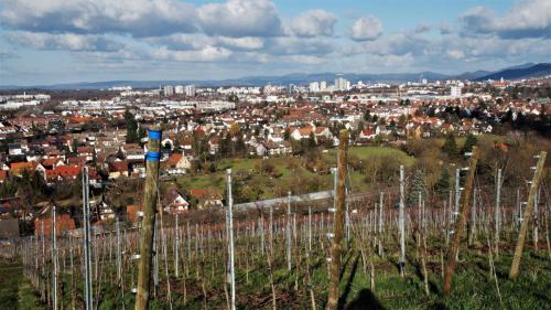 04 Freiburg, von St. Georgen aus, 05.02.20