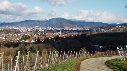 09 Freiburg von St. Georgen aus 05.02.20