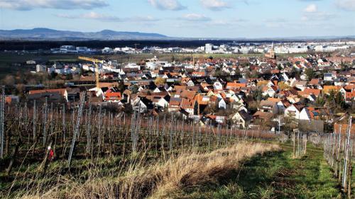 10 St. Georgen u. Kaiserstuhl, 05.02.20
